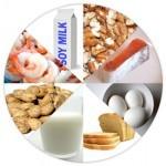 State Food Allergy Regulations